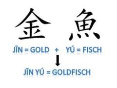 Goldfisch02