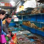 Der Fischmarkt in Zhenru