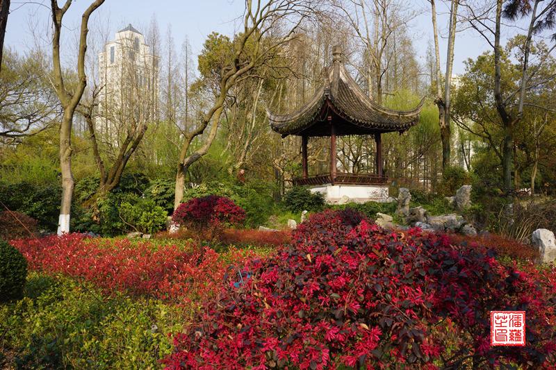 Ningbo_Mondseepark6