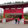 Der Panda-Pakt oder Zwei Bären für den Berliner Zoo